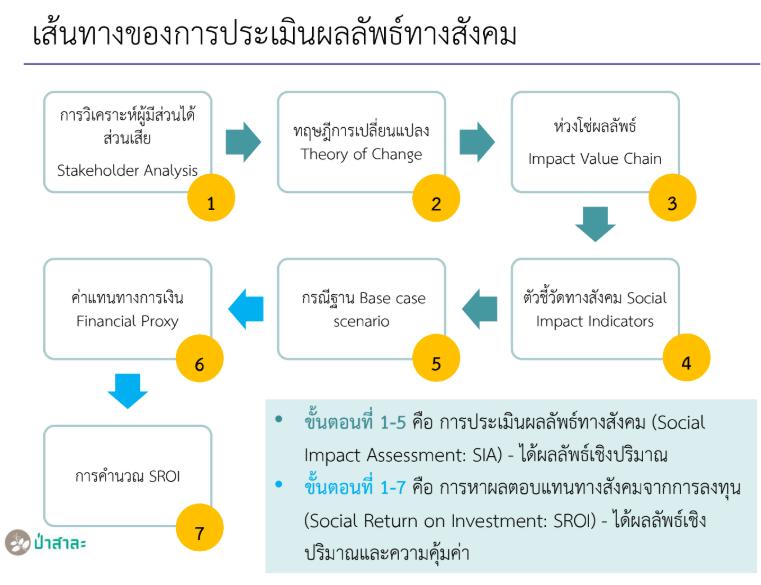 SIA Process